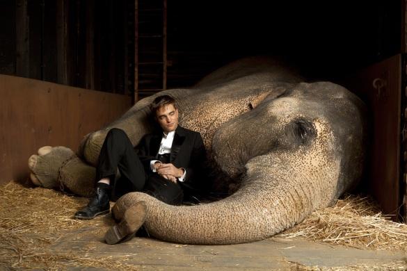 Still Water for Elephants... - Page 2 Robertpattinsonwfestilluhq3