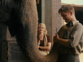 Water for Elephants Twitter